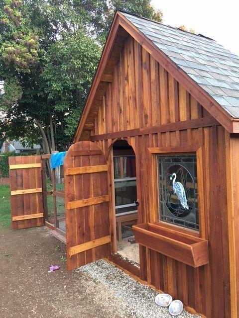 Chickens-2016's photos in D&D's Chicken Coop