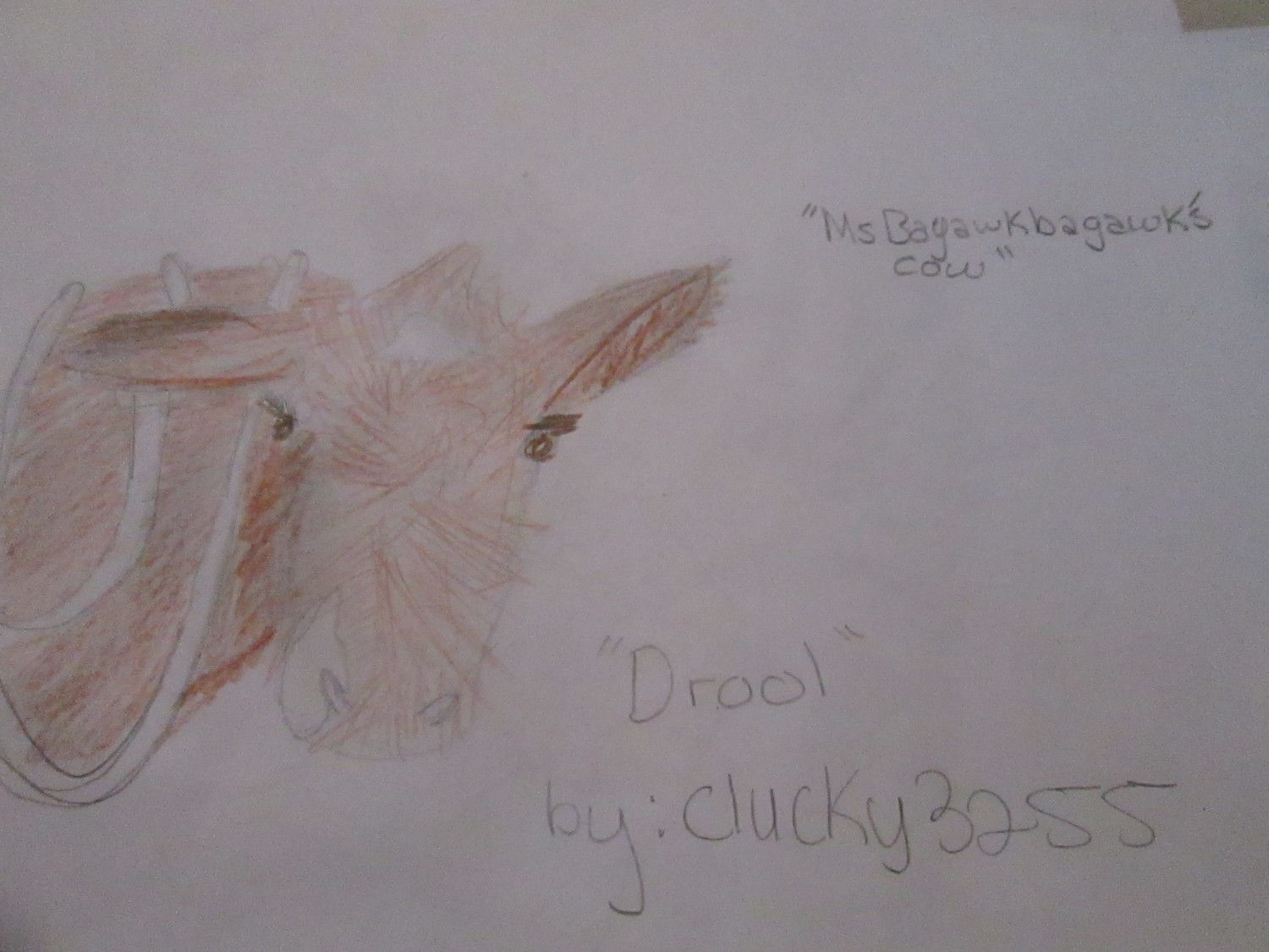 clucky3255's photos in Pet Art!! POST PICTURES OF PETS AND I WILL DRAW THEM!!!!!!!!!!!!!!!!!