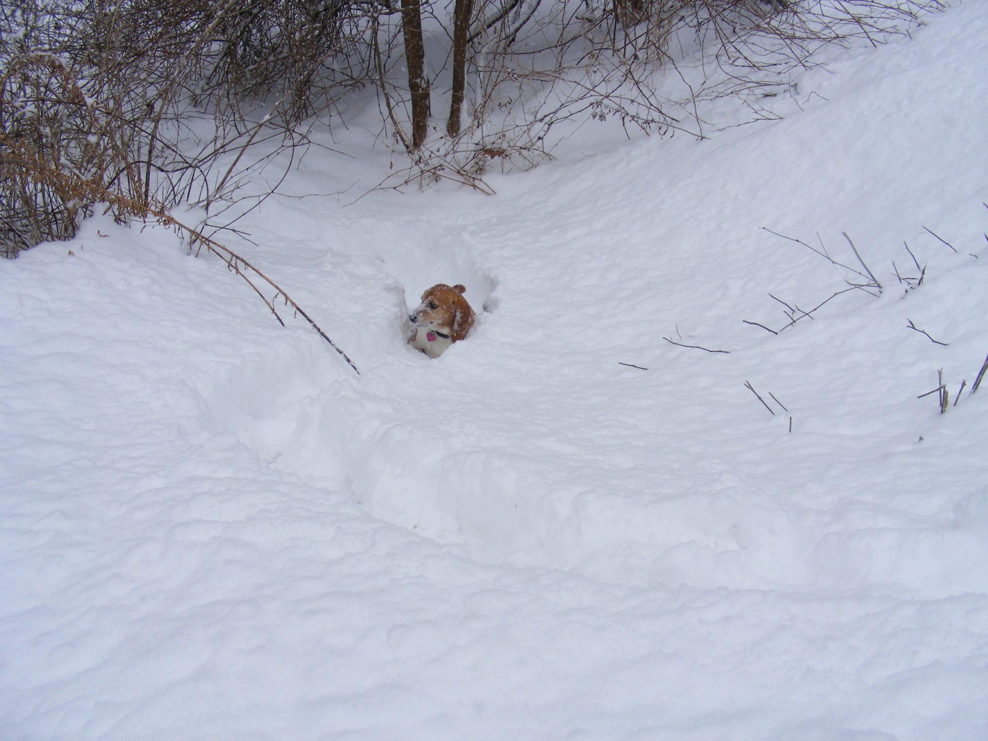 ummm...i'm stuck Mum, help please!