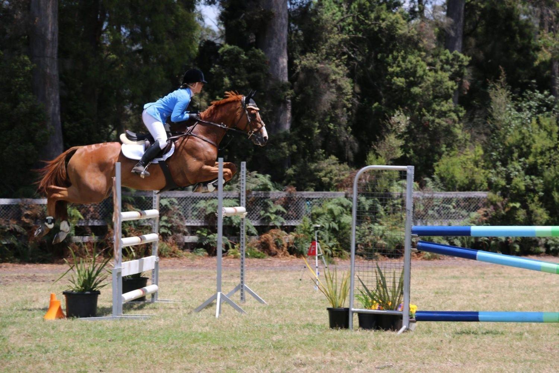 Tasmanian state titles 2014