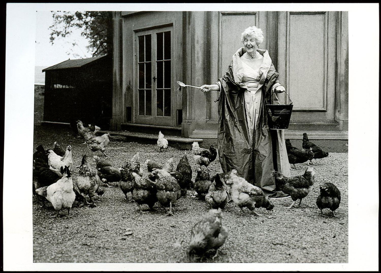 chickpostcrd1.jpg