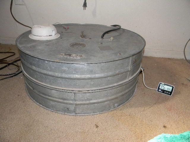 sanded brower incubatro 005.JPG