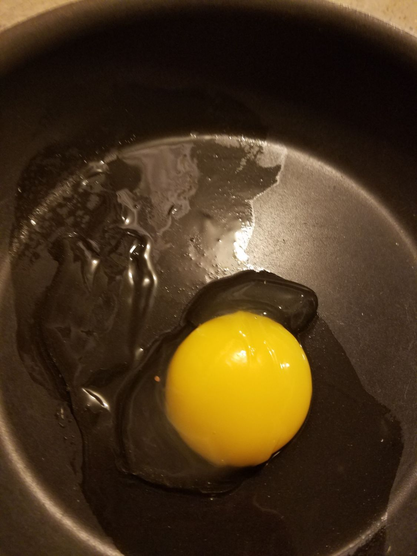 Odd eggs
