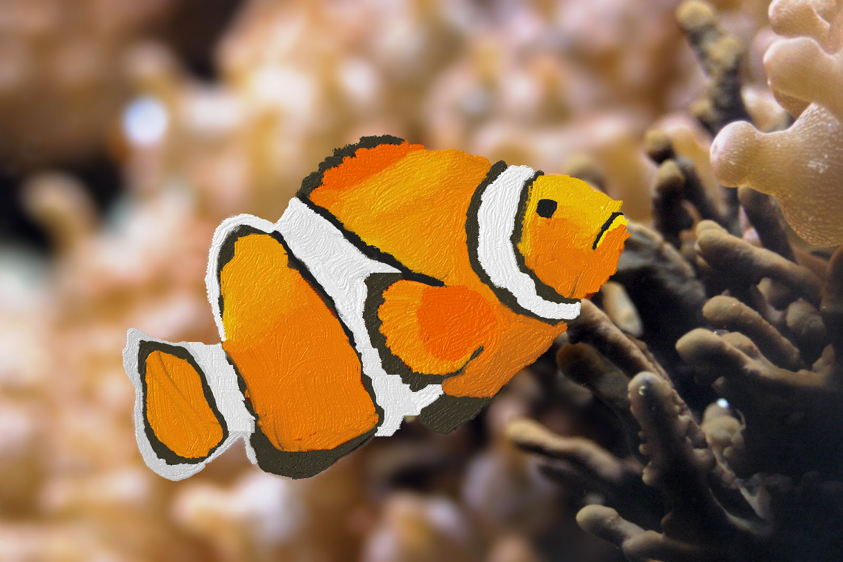 Clown Fish (Painting).png