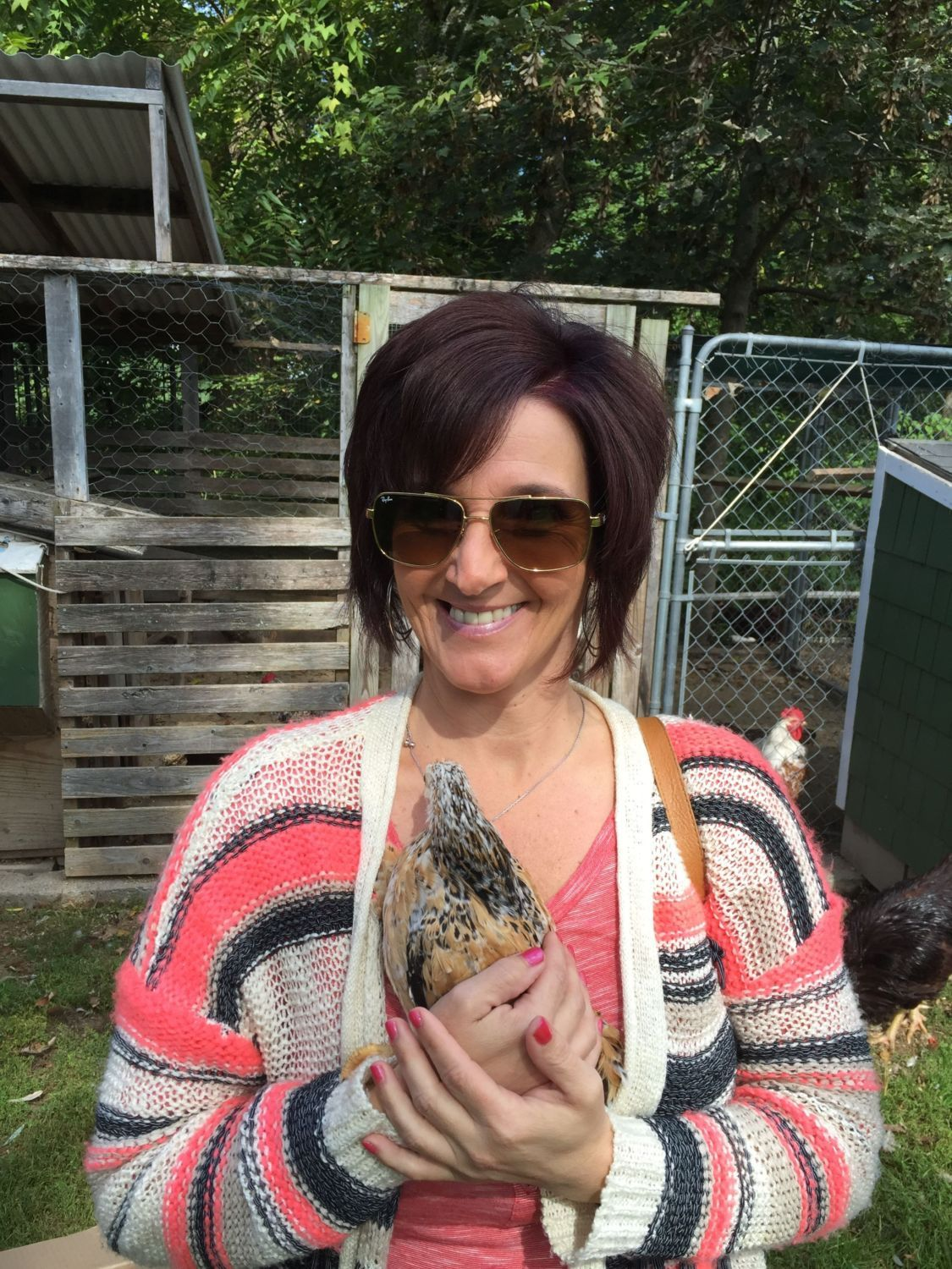 "My wife and her new friend and found love ""A serama hen"""