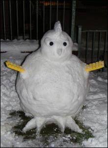 _45438279_snowchicken220.jpg
