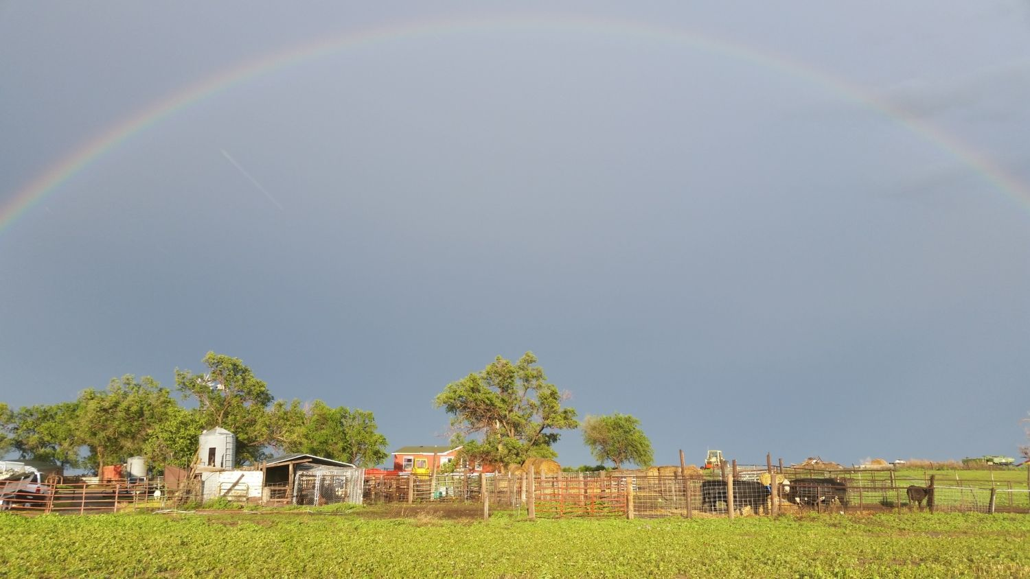 Picture of a rainbow over the farmstead after a late May storm.