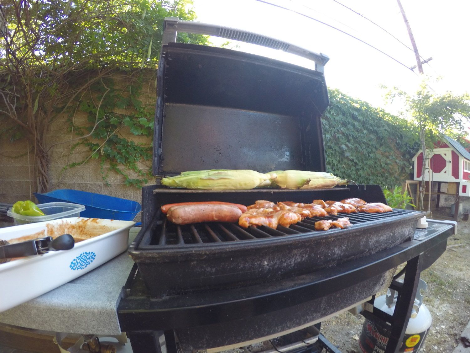 BBQ'N Chicken & Corn out by the Coop.. ;-)