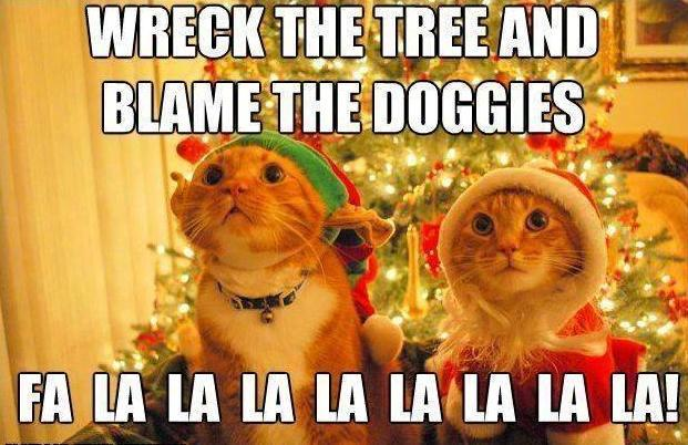 a-ha-ha-cat-christmas-funny-wreck-the-tree.jpg