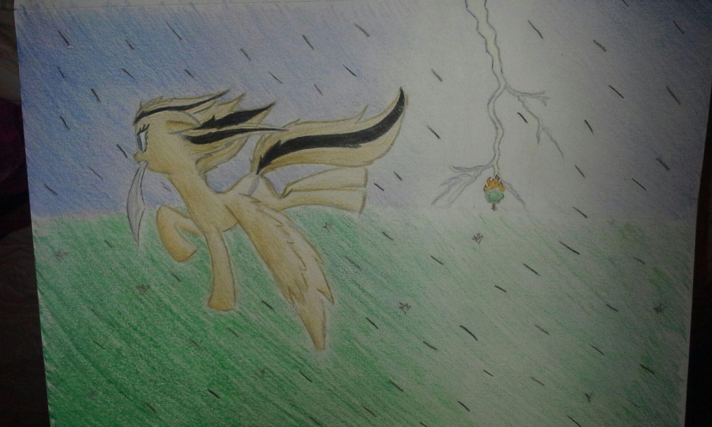 CayugaLover profile picture
