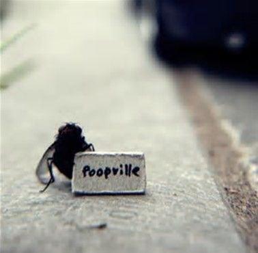 Poopville.jpg