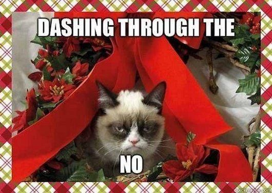 merry-christmas-funny-cat-photos-tard-grumpy-cat-hates-christmas1.jpg
